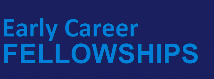 Early Career Fellowships